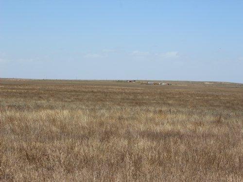 160 Acres Of  Texas County Crp : Hardesty : Texas County : Oklahoma