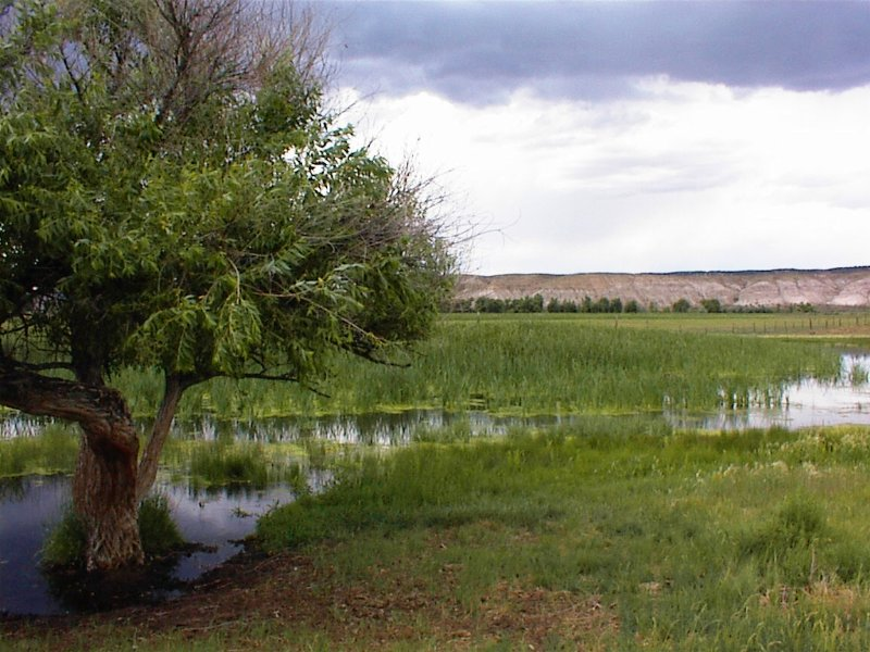 River Ranch And Water Rights : Maybell : Moffat County : Colorado