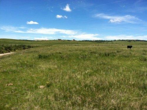 Bijou Valley 54 : Kiowa : Elbert County : Colorado