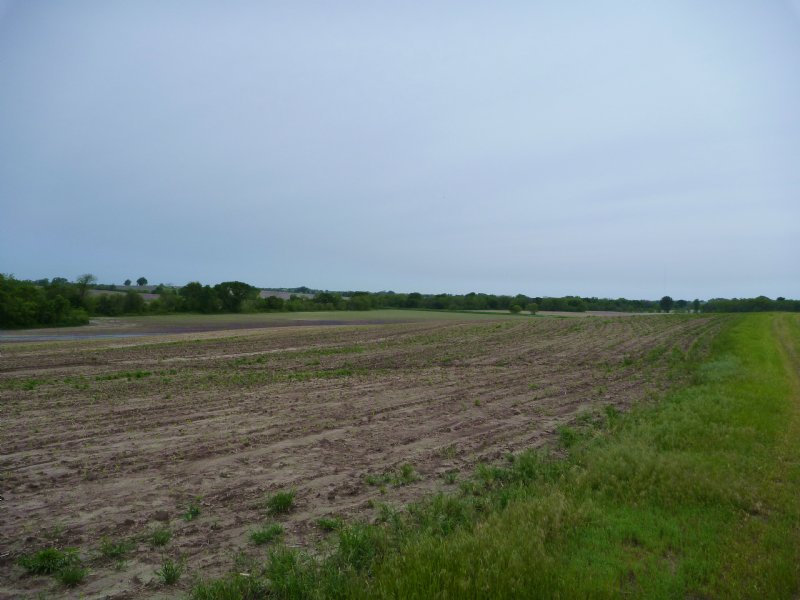 Palmyra Farm And Hunt : Palmyra : Otoe County : Nebraska