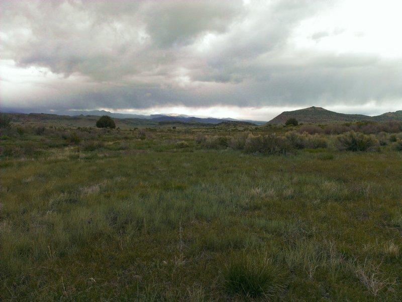 San Francisco Creek Ranch - 35 Acre : Del Norte : Rio Grande County : Colorado