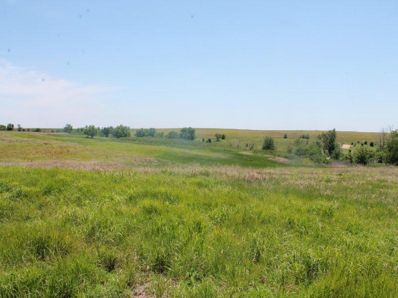 Rooks County Refuge : Woodston : Rooks County : Kansas
