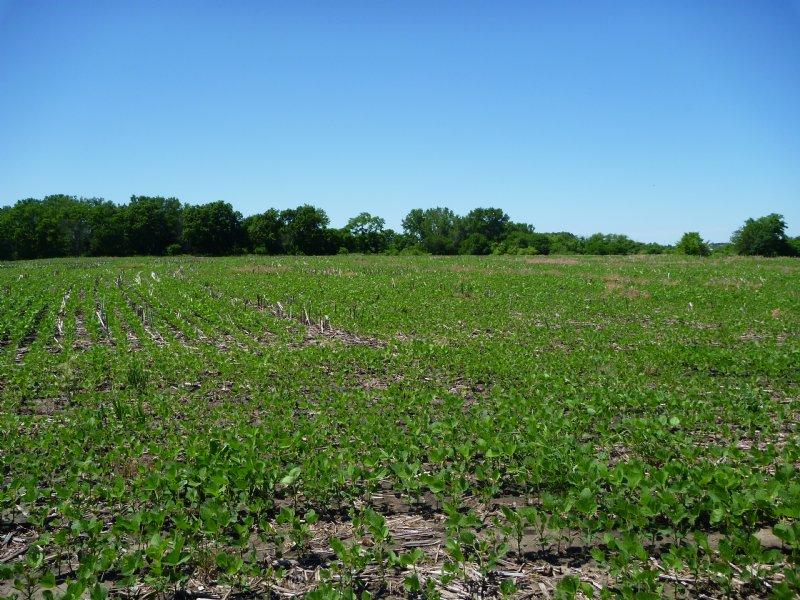Otoe County Farm And Hunt - Price R : Syracuse : Otoe County : Nebraska