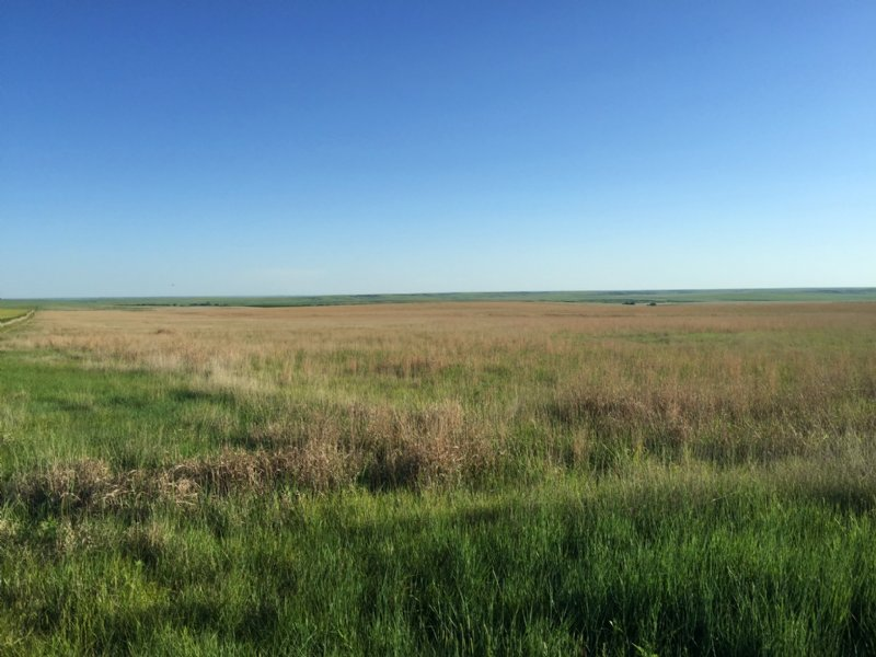 Wallace County Sanctuary : Wallace : Wallace County : Kansas