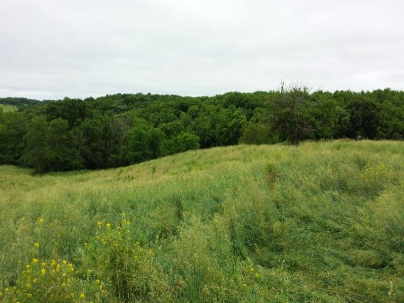 Ft Calhoun Acreage I : Fort Calhoun : Washington County : Nebraska