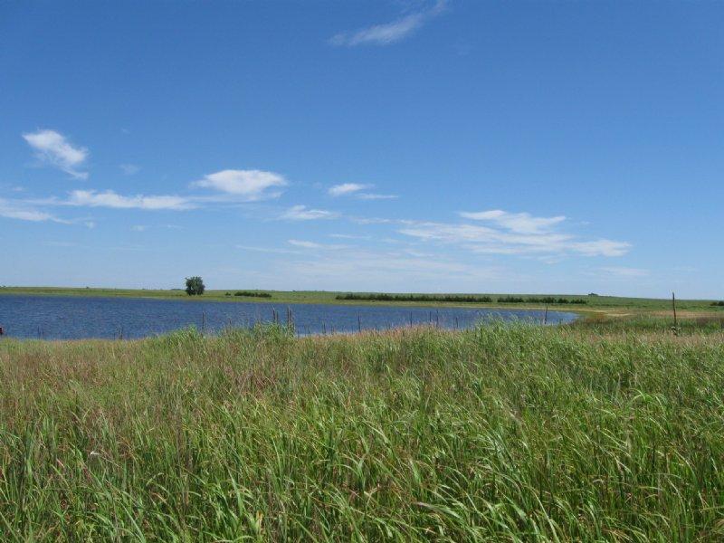Perkins County Pasture And Wrp : Grant : Perkins County : Nebraska