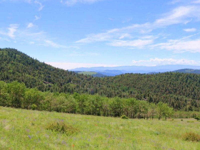 Little Badger Ranch And Hunting : Cotopaxi : Fremont County : Colorado