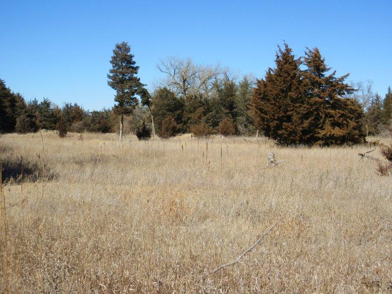 Lincoln County Whitetails : Maxwell : Lincoln County : Nebraska