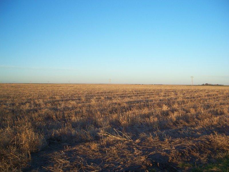 Deuel County Dryland Farm : Lewellen : Deuel County : Nebraska