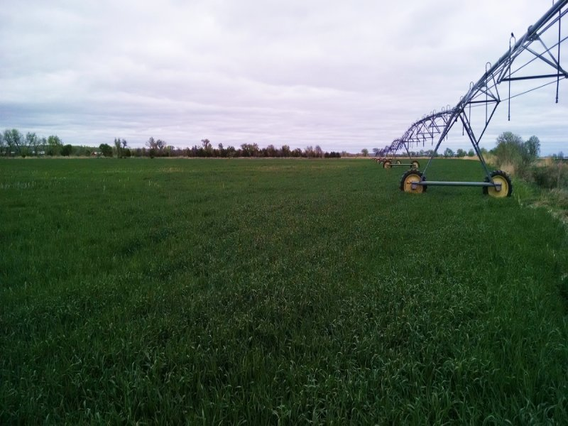 Lincoln County Pivots Auction : Sutherland : Lincoln County : Nebraska