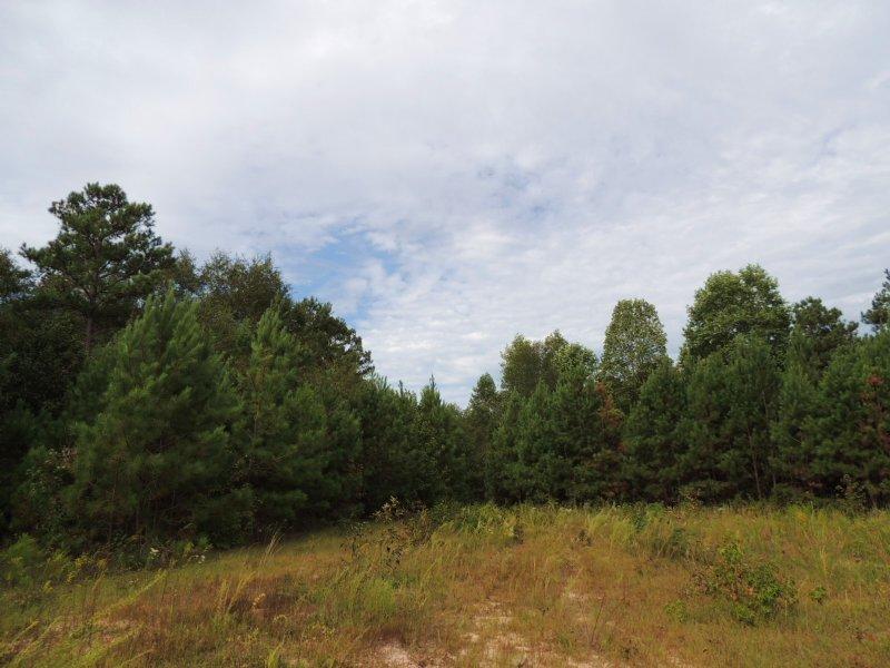 75.72 Ac Mountville Hogansville Rd. : Hogansville : Troup County : Georgia