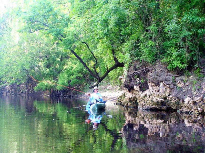Withlacoochee Bluff Plantation : Madison : Madison County : Florida