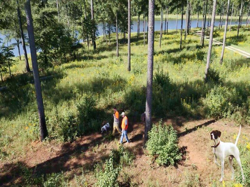 Kawikee Refuge : Richland : Stewart County : Georgia