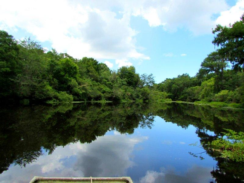 Econfina River Place : Lamont : Taylor County : Florida