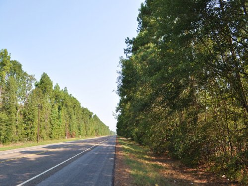 26 Acres Hwy 146 South Tract : Rye : Liberty County : Texas