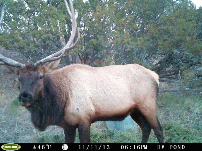 Purgatoire Ranch East In-holding : Kim : Las Animas County : Colorado