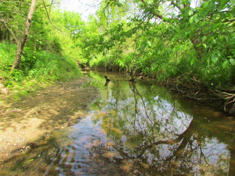 Birch Creek Farm : Roodhouse : Greene County : Illinois