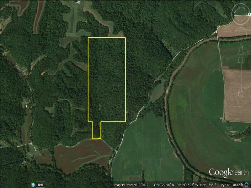 Sugar Creek Big Timber : Fieldon : Jersey County : Illinois