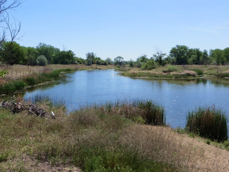 Birdwood Creek Island East : Hershey : Lincoln County : Nebraska