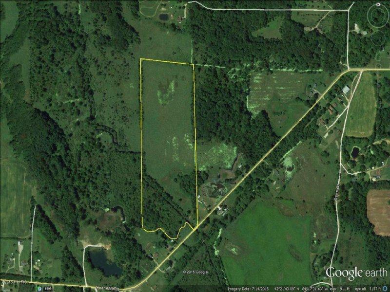 32 Big Buck Acres : Munith : Jackson County : Michigan