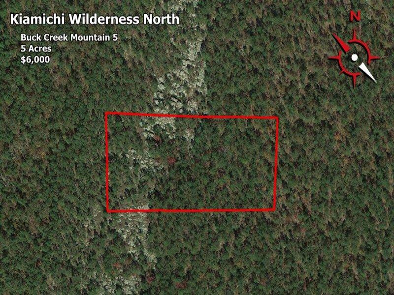 Kiwi North Buck Creek Mountain : Daisy : Pushmataha County : Oklahoma
