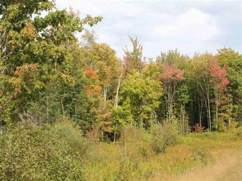 Stenson Rd, Mls 1090400 : Covington : Baraga County : Michigan