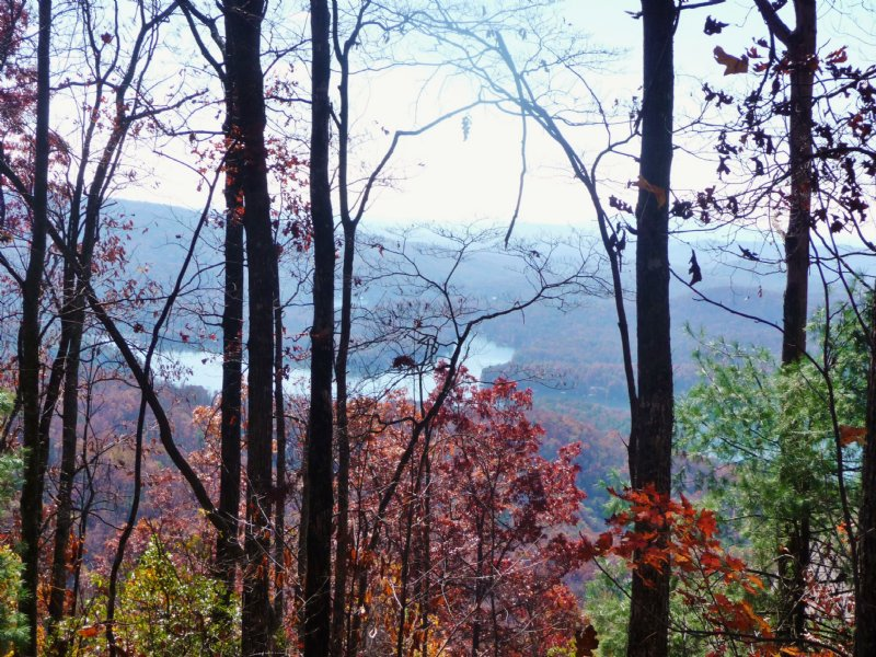 True Mountain Top : Clayton : Rabun County : Georgia
