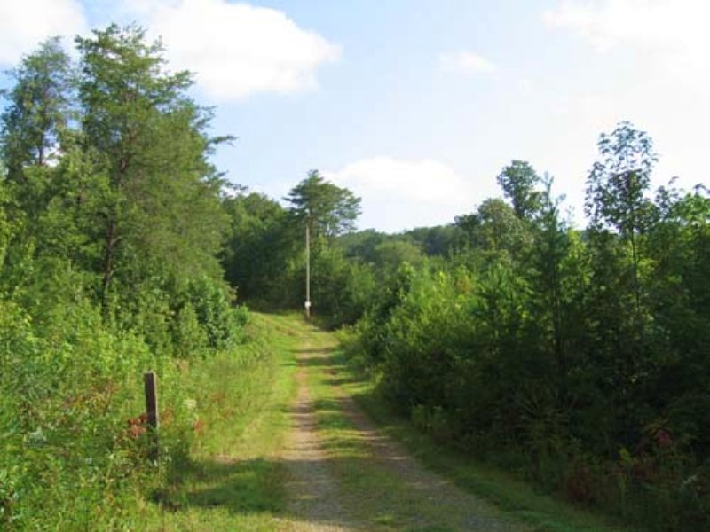 Auction:121+/- Ac. Residential Land : Copperhill : Polk County : Tennessee