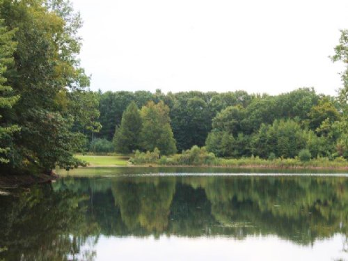 Waterfront Lot On Fawn Lake : Orwell : Oswego County : New York