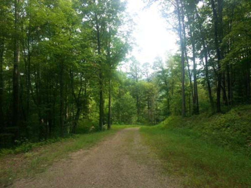 Auction:21 Residential Lots W/power : Hayesville : Clay County : North Carolina