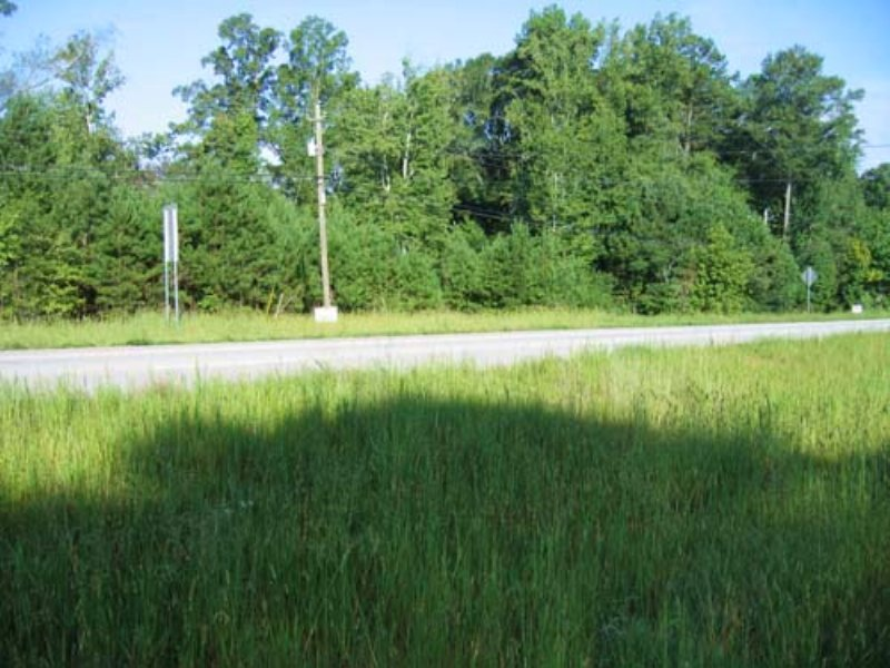 Auction:68+/- Ac. Agricultural Land : Felton : Haralson County : Georgia