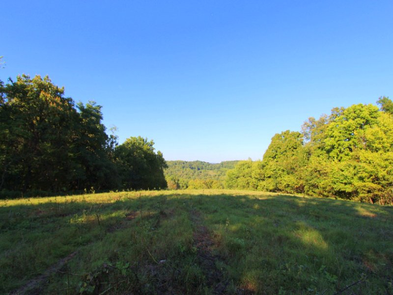 108 Acres Of Gorgeous Countryside : Mount Pleasant : Maury County : Tennessee