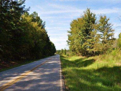 Boulder Pines Tract : Greensboro : Greene County : Georgia