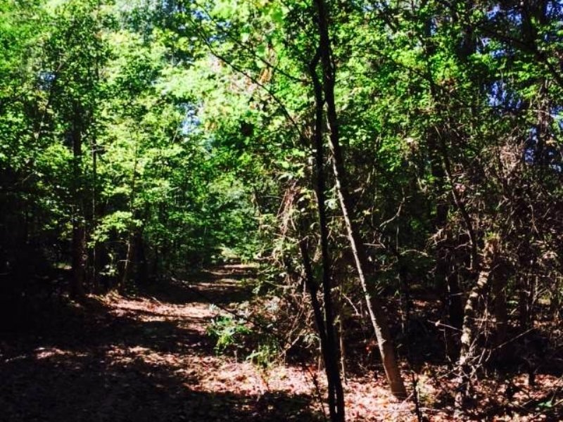 102 Hunting Acres : Lexington : Holmes County : Mississippi