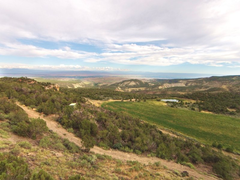 Grand Mesa Ranch : Eckert : Delta County : Colorado