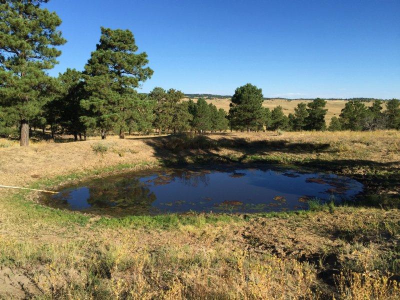 Hill Top Retreat : Kiowa : Elbert County : Colorado