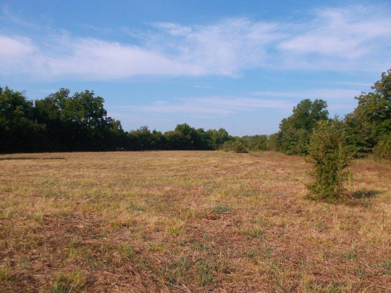 Small Acreage For Sale In Ne Tx : Paris : Lamar County : Texas