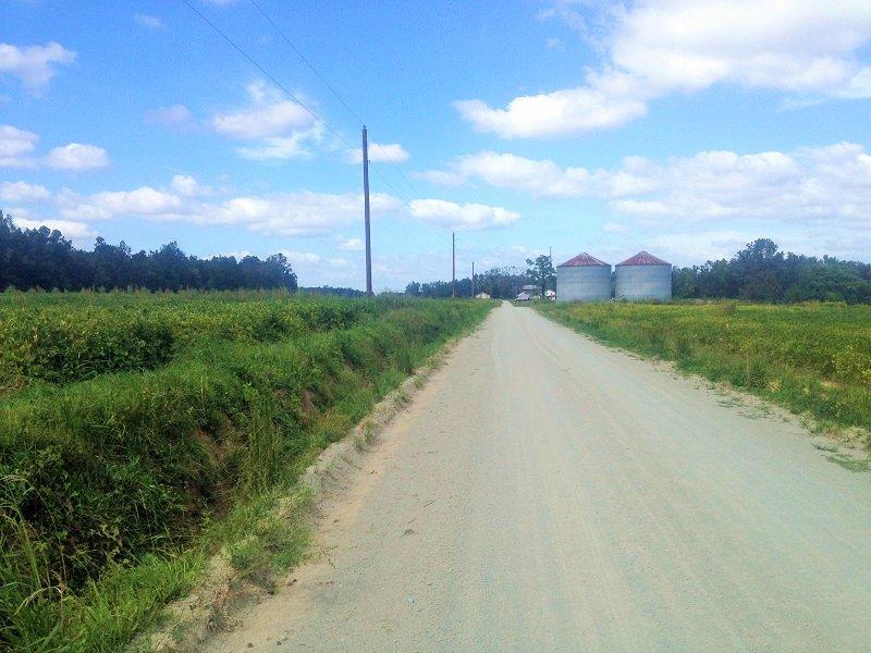 Country Homesite Or Mini-farm : Finklea : Horry County : South Carolina