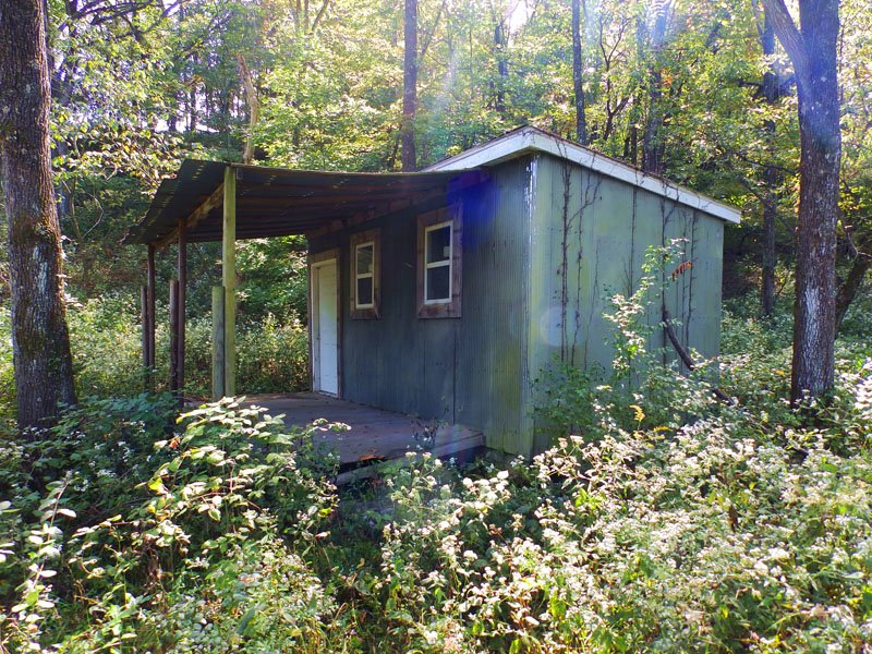 5 Acres, Small Hunting Tract : New Canton : Pike County : Illinois