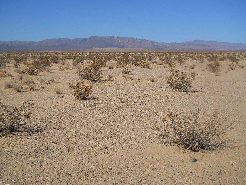 1.25 Acres With Power 400 Feet Away : Twentynine Palms : San Bernardino County : California