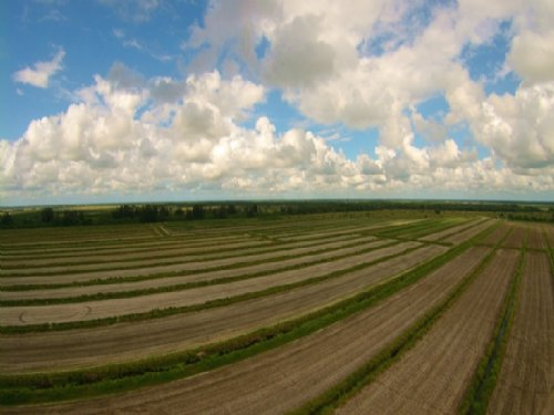 St. Lucie West Organic Farm : Port Saint Lucie : St. Lucie County : Florida