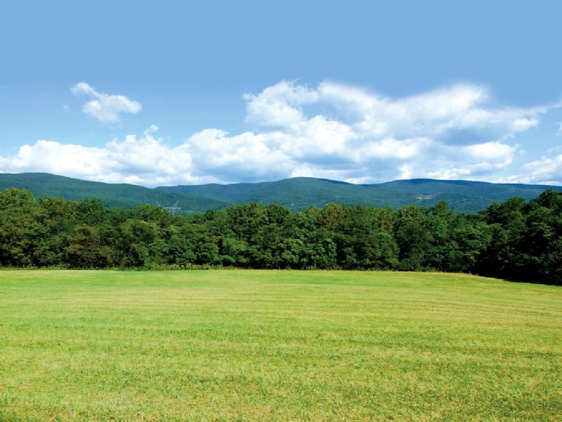 Sealed Bid  89.84 Acres : Salem : Roanoke County : Virginia