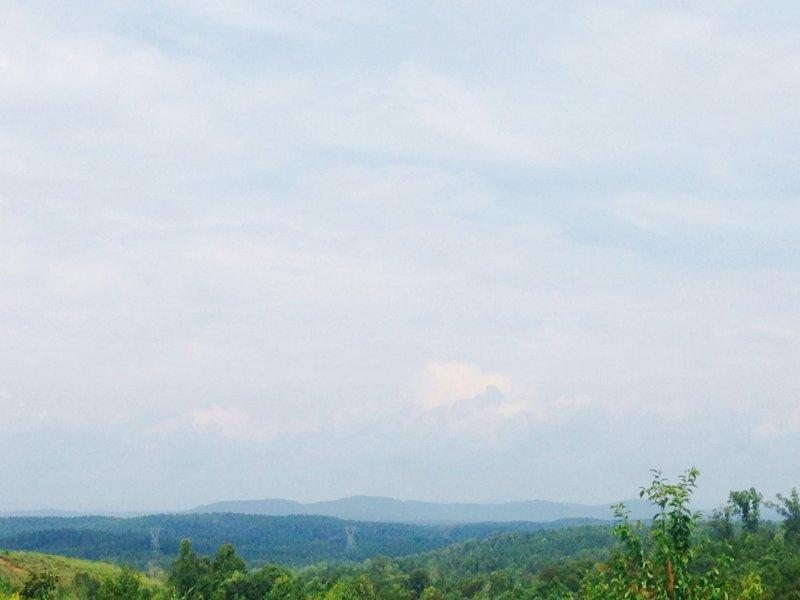 Chauga River Mountain Timber : Westminster : Oconee County : South Carolina