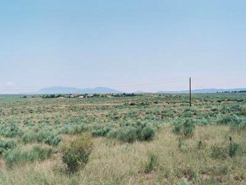 .30 Acre Large Cul-de-sac Lot : Los Lunas : Valencia County : New Mexico