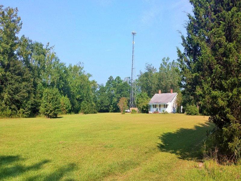 Burgaw Commercial Land : Burgaw : Pender County : North Carolina