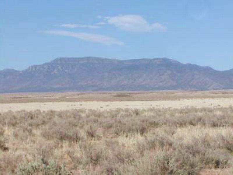 1/2 Acre In Rio Grande Estates : Los Lunas : Valencia County : New Mexico