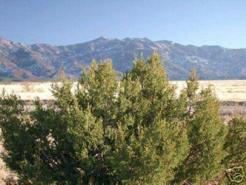 1/4 Acre Rio Del Oro Subdivision : Los Lunas : Valencia County : New Mexico