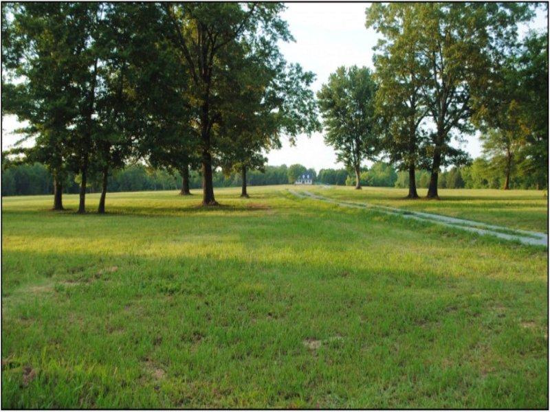 41 Acres In Oktibbeha County : Starkville : Oktibbeha County : Mississippi