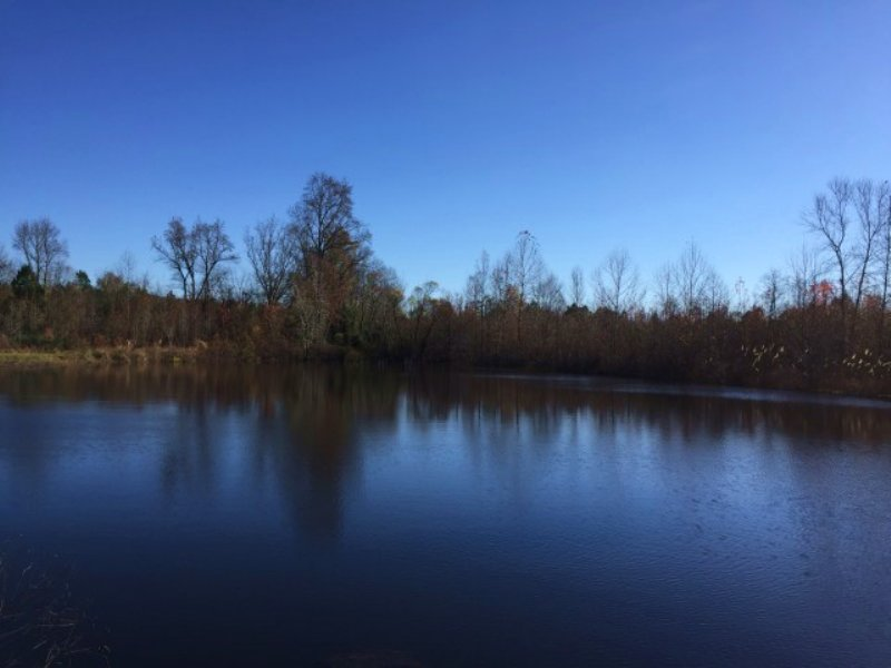 Owner Financing/ House And Pond : Warrenton : Warren County : Georgia