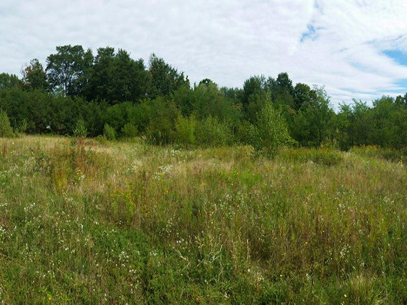 Building Lot Near Salmon River : Pulaski : Oswego County : New York